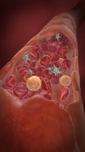 L-Arginin Arterien Wirkung